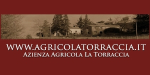 http://www.agricolatorraccia.it/